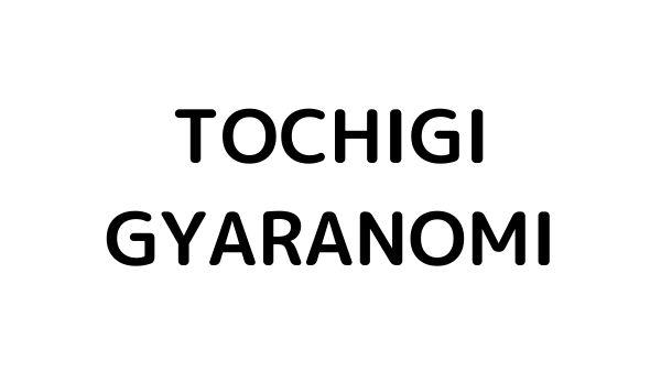 栃木県でのギャラ飲みで稼ぐ!金持ち男性とのやり方や相場が解る!